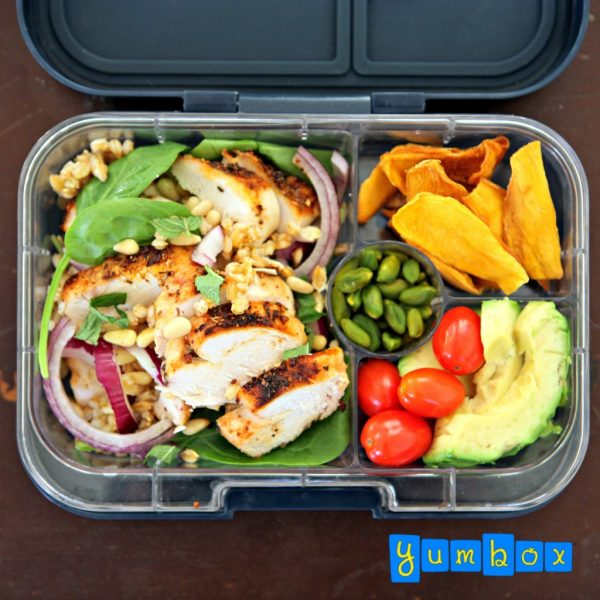grille-chicken-spinach-barley-salad-yumbox-ig-1024x1024-e1535386247213